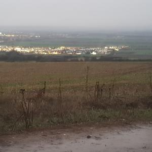 Sangerhausen Pfeifersheim