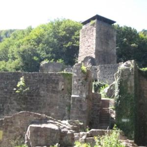Auf dem Burgturm Neckarsteinach