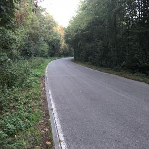 Parkniesche zwischen Forst & Hambrücken